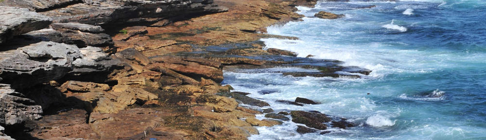 Century 21 Hansen & The Beaches